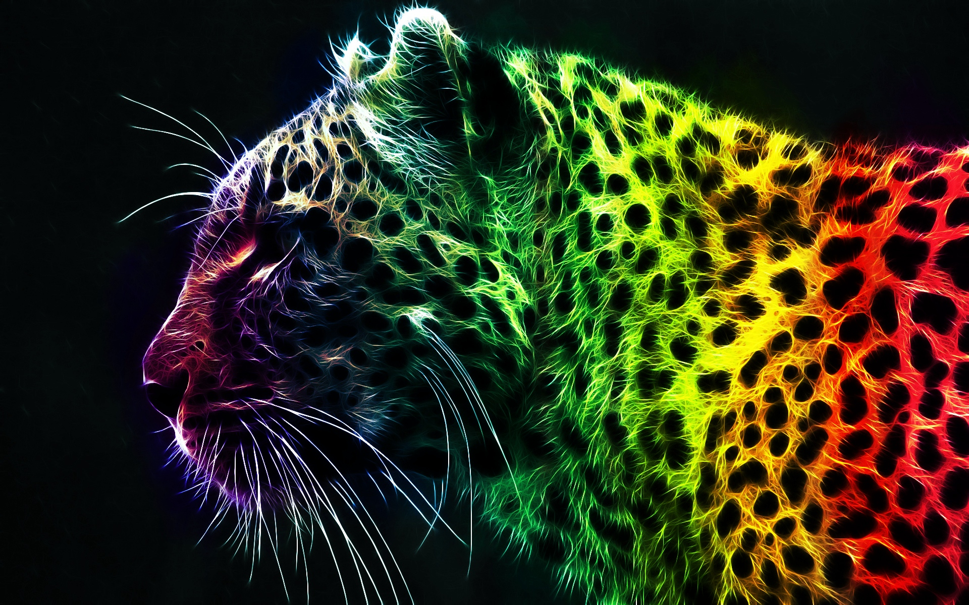 colorful-leopard